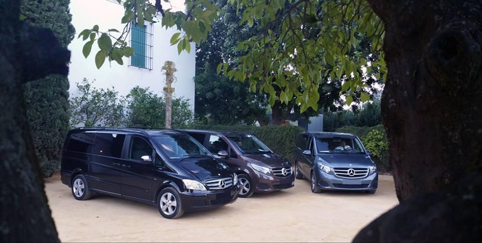 minivan-con-conductor-en-sevilla-9