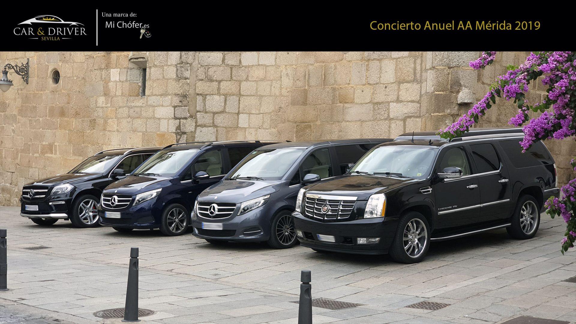 suv y minivan con chofer en sevilla